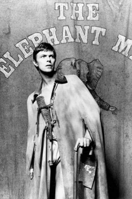 "From the ""Elephant Man"" Playbill"